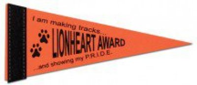 "4"" x 10"" Colored Felt Pennants"