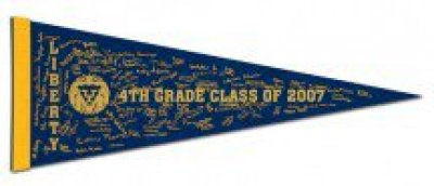 "9"" x 24"" Colored Felt Pennants"
