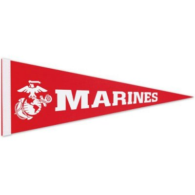 "12"" x 30"" Colored Felt Pennants"