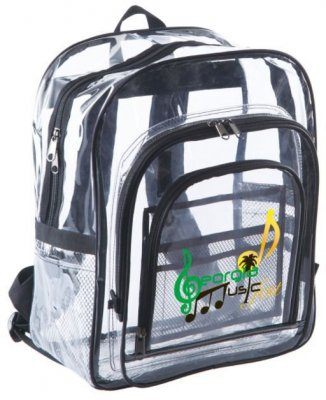 The Large Clear Backpack