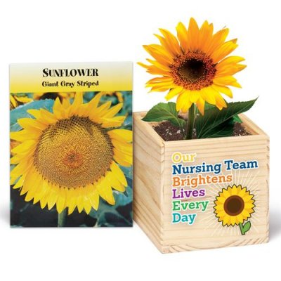 Our Nursing Team Brightens Lives Every Day Wooden Flowerpot Cube