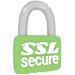 SSL Secured Form